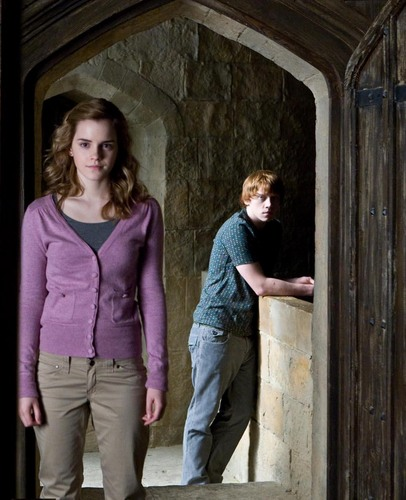 Romione wallpaper probably with a street, a portcullis, and an outhouse called Ron and Hermione