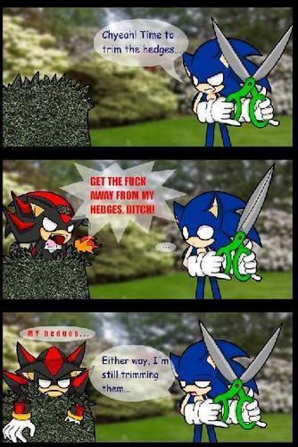 Shadow The Hedgehog kertas dinding called Shadow the Hedgehog****