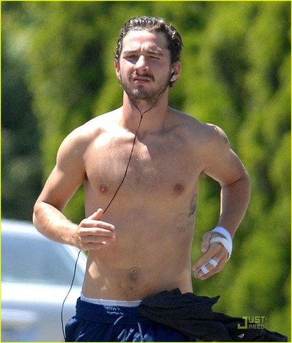 Shia LaBeouf wallpaper containing a hunk entitled Shia Labeouf Shirtless