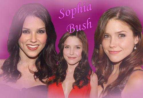 sophia arbusto, bush fondo de pantalla with a portrait and attractiveness titled Sophia <3