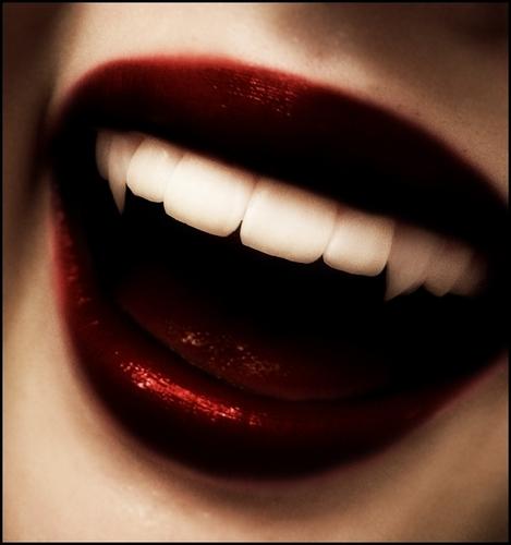 Vampires wallpaper titled Vampire fangs