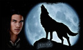 jacob, werewolf - vampires-vs-werewolf photo