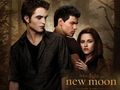 new moon Edward vs. Jacob - vampires-vs-werewolf photo