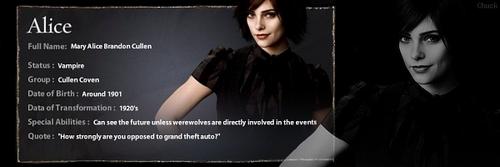 Alice Cullen Info Banner