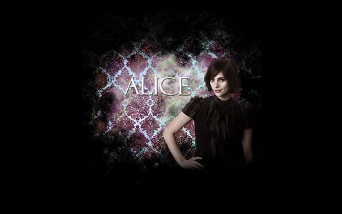 অ্যালিস্ কুলেন দেওয়ালপত্র possibly containing a chainlink fence, a concert, and a sign called Alice Cullen