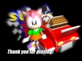 Amy Rose Sonic R