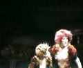 Cats Musical Stage Photos