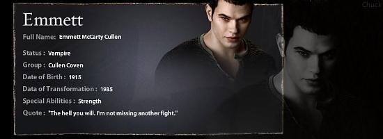 Emmett Cullen Info Banner