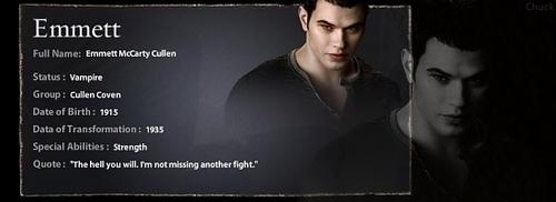 Emmett's Profile Banner