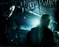 HBP  - bellatrix-lestrange wallpaper