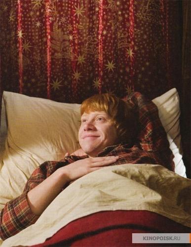 Harry Potter & The Half-Blood Prince / 写真