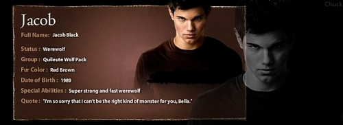 Jacob Black Info Banner