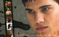 Jacob Black New Moon - vampires-vs-werewolf wallpaper