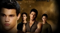 NEW MOON (WEREWOLVES)  - twilight-series photo