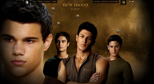 NEW MOON (WEREWOLVES)