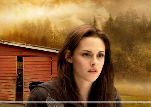 Edward e Bella wallpaper possibly containing a portrait titled New Moon