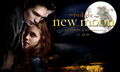 New moon - vampires-vs-werewolf photo