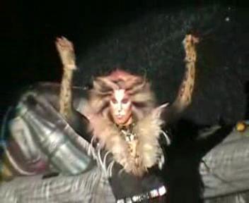 Cats the Musical wallpaper titled Rum Tum Tugger