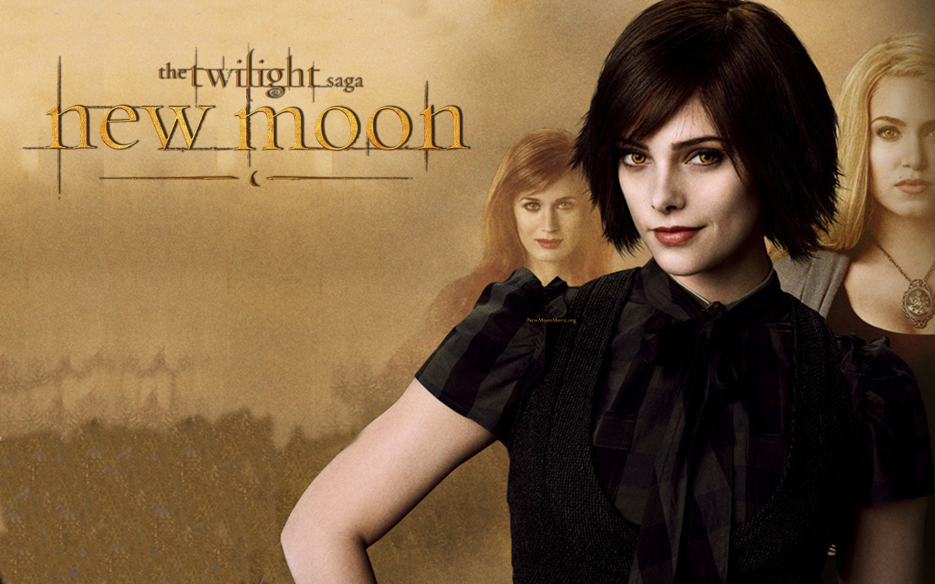 http://images2.fanpop.com/images/photos/7200000/THE-CULLENS-NEW-MOON-WALLPAPER-twilight-series-7245108-1920-1200.jpg