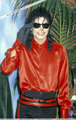 The BMI Michael Jackson Award - michael-jackson photo