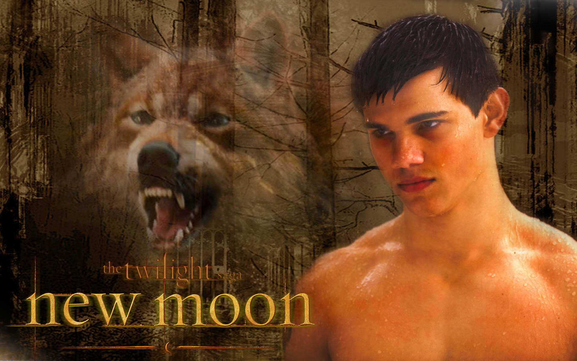 Jacob new moon naked