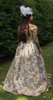 Anne Boleyn 壁紙 possibly with a 女性用ガウン, キル, kirtle and a ポロネーズ called natalie dormer