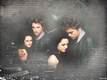 robert-pattinson - robert pattinson wallpaper