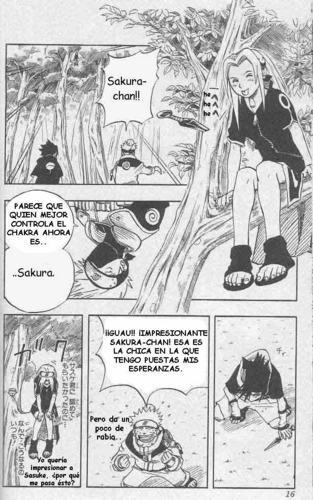 sakura manga