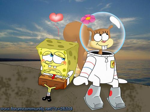 sendy+sponge