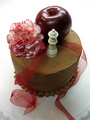 twilight cakes - twilight-series photo