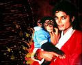 michael-jackson - weraerwa wallpaper