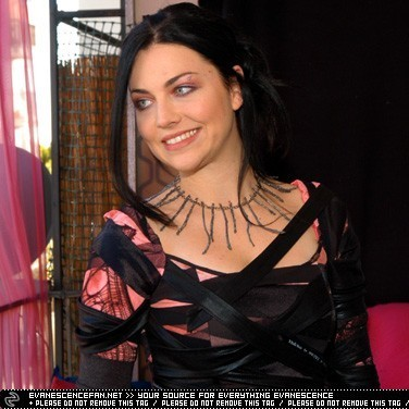 Amy Lee karatasi la kupamba ukuta called 2003 Grammy Awards