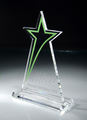 Chel1395 trophy - fanpops-got-talent photo