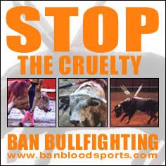 Against Bullfighting