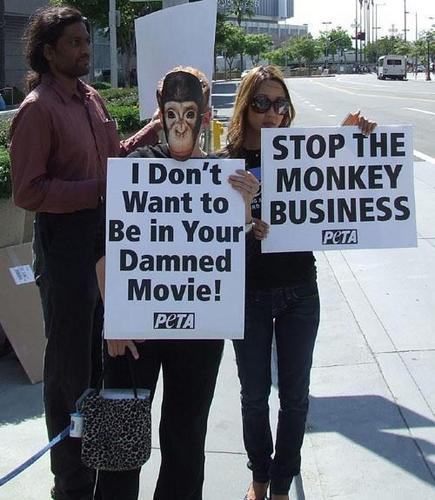 animales are not ours to use for entertainment