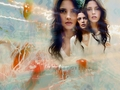 Ashley - jackson-rathbone-and-ashley-greene wallpaper