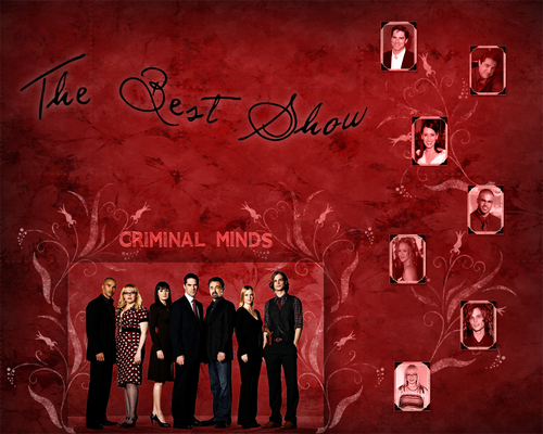 Criminal Minds wallpaper possibly containing a concert titled Criminal minds The team