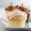 Cute cupcakes - cupcakes photo