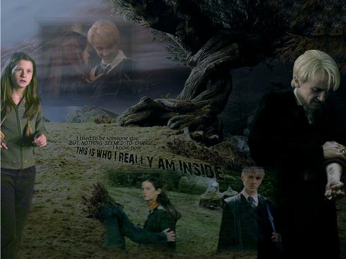 Draco-Ginny