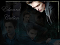 Edward Cullen - vampires-vs-werewolf wallpaper