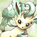 Eevee Evolutions - eevee-evolutions-clan photo