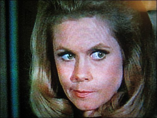 Elizabeth Montgomery wallpaper with a portrait titled Elizabeth as Samantha  (Bewitched)