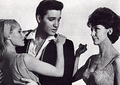 Elvis In The Film,