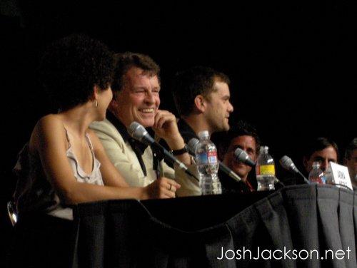 Fringe Panel @ Comic Con