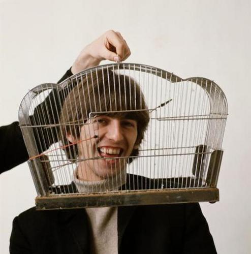 George Harrison birdcage
