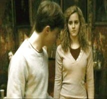 Harry and Hermione wallpaper containing a portrait entitled Harmony