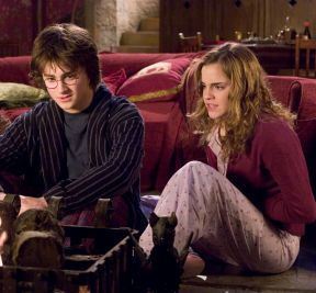 Harry and Hermione wallpaper containing a drawing room and a brasserie entitled Harmony