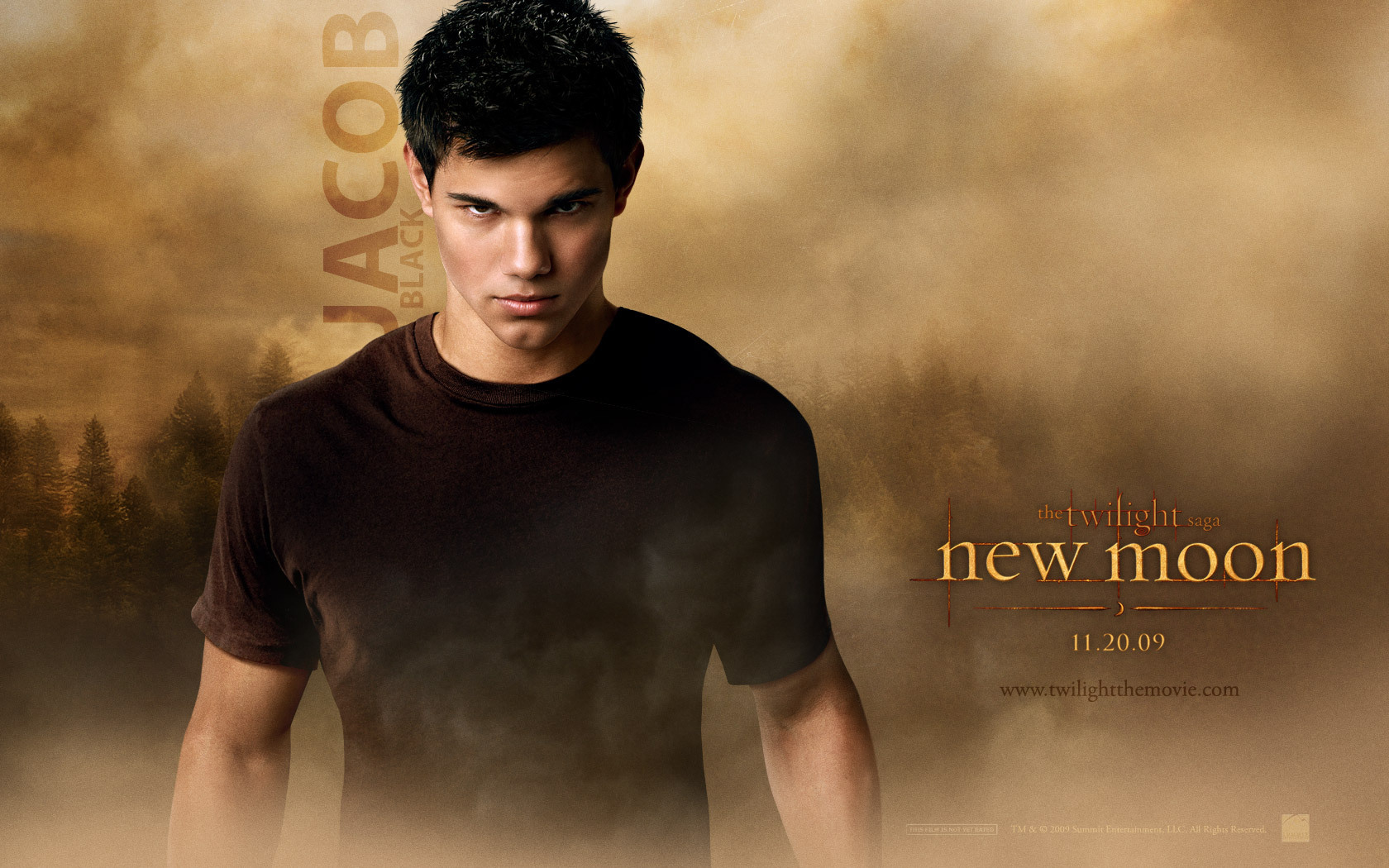 Jacob Black Wallpaper - Jacob Black and Renesmee Cullen Wallpaper ...