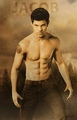 Jacob Black (Wolf Pack) - taylor-lautner fan art