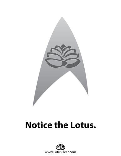 Lotus Fleet 8